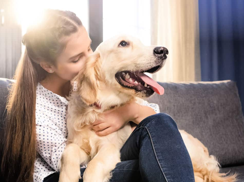 Dog Sitters: A Guide on How Much to Pay for Services