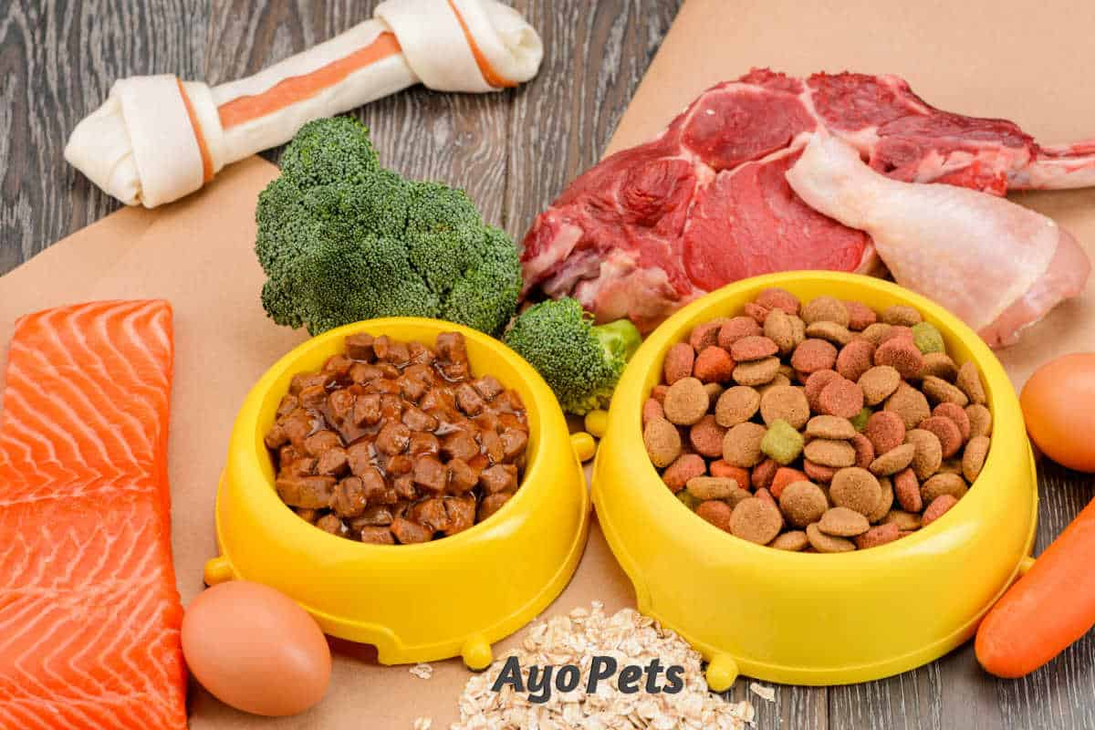 Is It Cheaper To Make Your Own Dog Food? Cost Guide With Tables