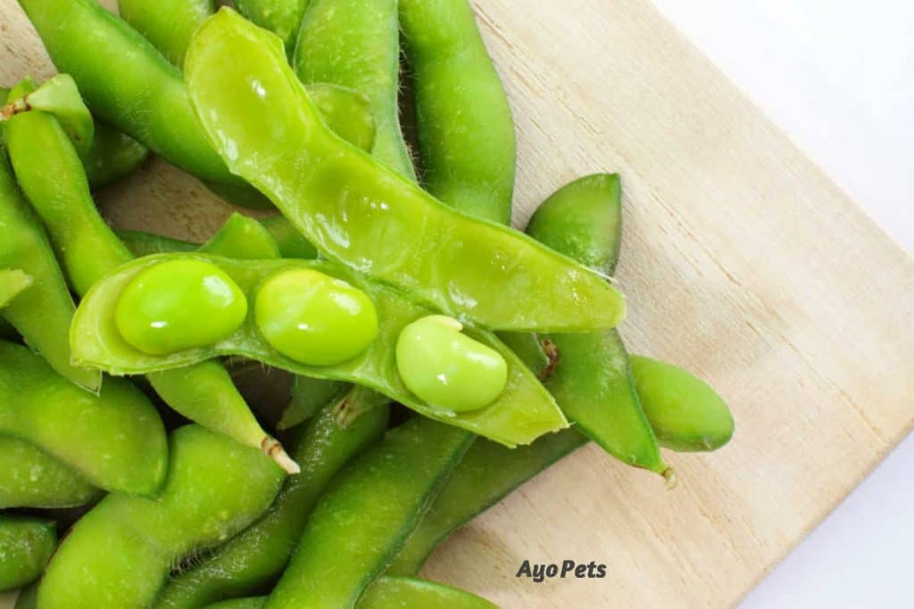 Photo of edamame pods and beans